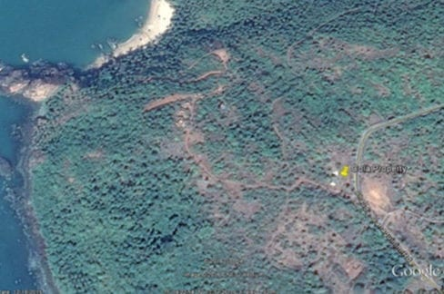 10,000sqm sea view settlement & orchard land for sale in Cola near the Cola Beach in Canacona