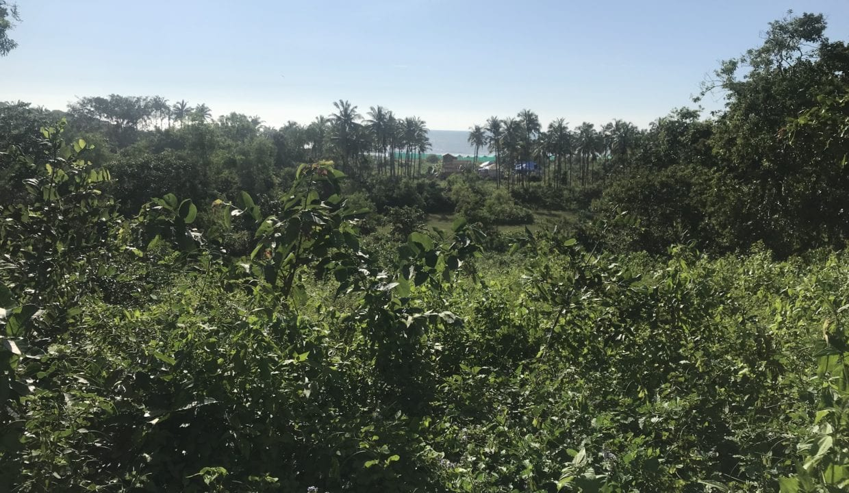 Sea view beach land plot for sale in Agonda beach In canacona South goa