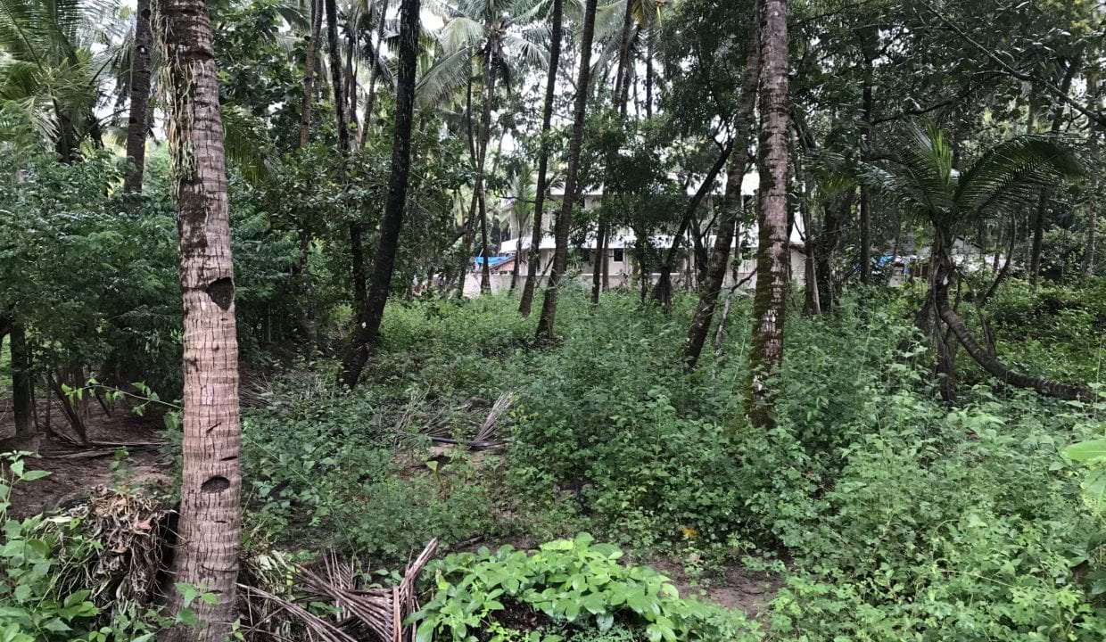1500 sqm Land (settlement zone) for sale in Seraulim Salcette South Goa.   This is a square shaped plot with a wide frontage.  Ideal for a bungalow or a small apartment block or villa/ row house development or as an investment.   The location is peaceful and serene.   The plot is situated at close proximity to Margao Town and Colva - Betalbatim beach.   The price is ₹1,80,00,000/- negotiable (One Crore Eighty Lakhs Only).  Site visit by appointment only.   Marketed by OWNERS GOA: -  +91 98239 27304 info@ownersgoa.com ownersgoa.com