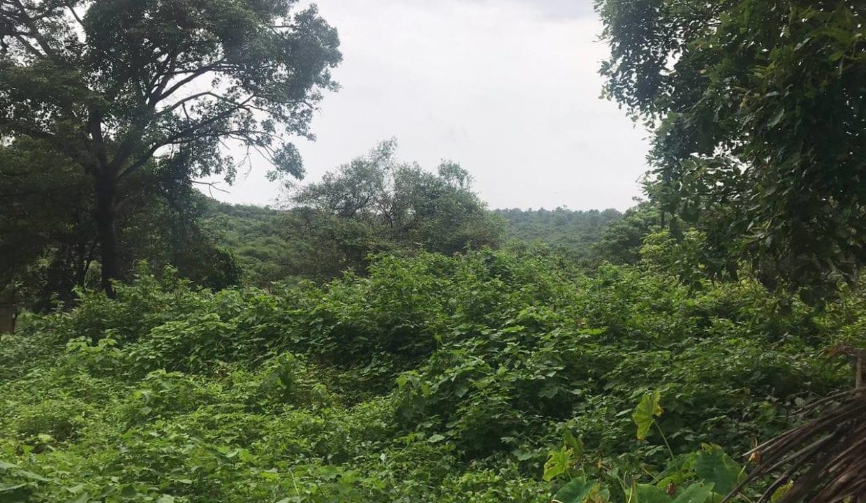 Settlement Land in Alto Santacruz near Panjim city