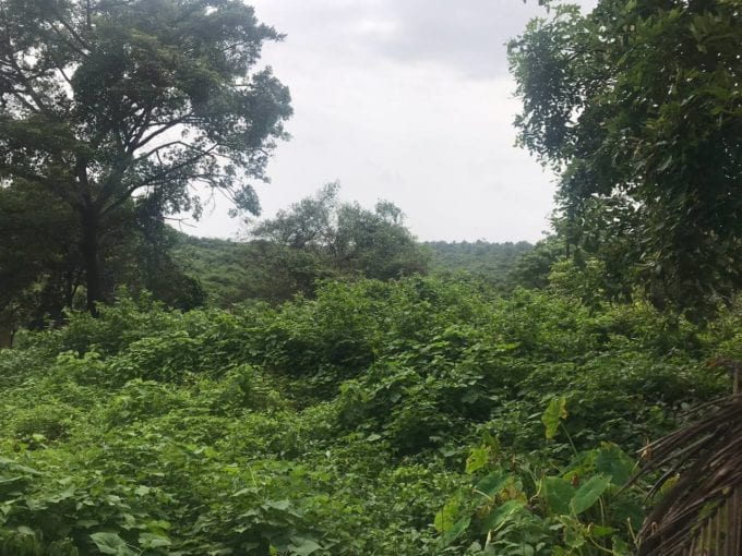 Settlement Land in Alto Santacruz near Panjim city